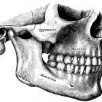 disordini cranio cervico mandibolari DCCM